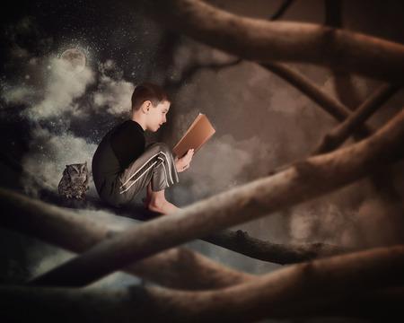 Malý chlapec sedí na větvi stromu čtení o starý příběh knihy s sovy v temném lese pro vzdělávací či představivosti koncept.
