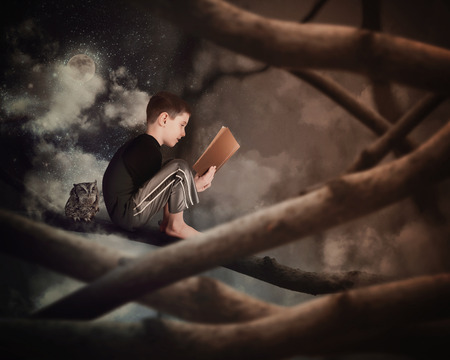 A little boy is sitting on a tree branch reading on old story book with an owl in the dark woods for an education or imagination concept.