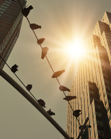 birds on a wire: Pigeon birds are sitting on top of a telephone wire in a retro vintage city with skyscrapers and sunshine in the sky. Stock Photo