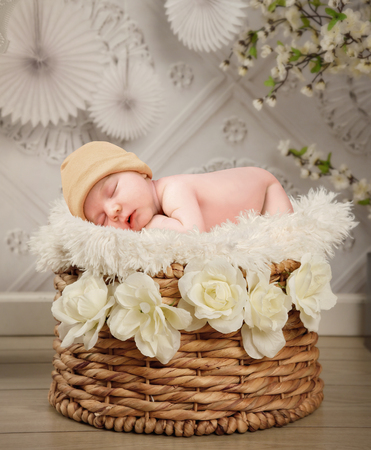 A cute newborn baby is sleeping in a basket with whte flowers and a texture wall background for a photography portrait or love concept.