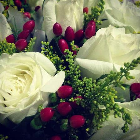 White roses with cherries Stock Photo