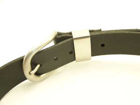 Image of a black leather belt with metal buckle, laying on its side and curving through the frame.  Horizontal orientation.