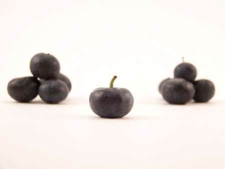 Image of a single blueberry with others piled in the background.
