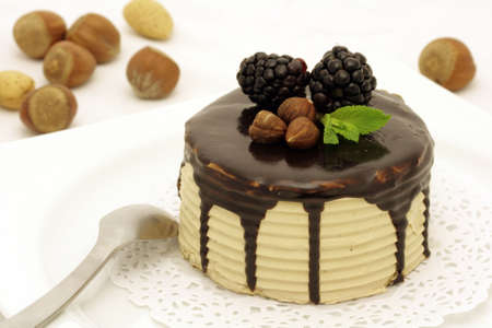 Hazelnut and chocolate cake with mint leaves and mulberries Stock Photo - 2791418