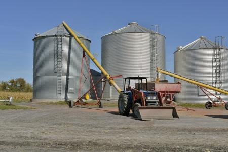 trasfer of corn crop into silos
