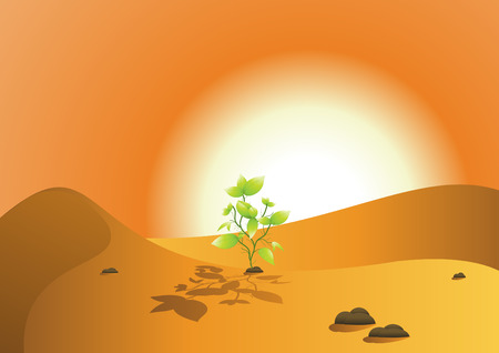 desert and saplings