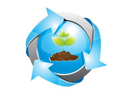 rotund: seedlings 2 Illustration