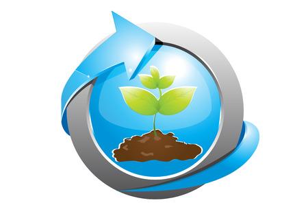germinate: seedlings 4 Illustration