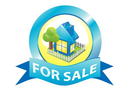 house for sale: blue house for sale