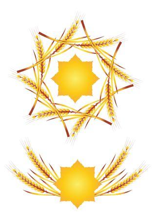 barley field: wheat Illustration