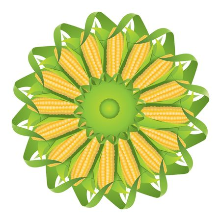 husk: corncob Illustration