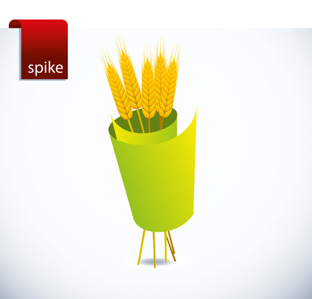 spike Vector