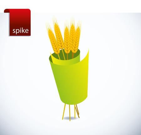 siluet: spike