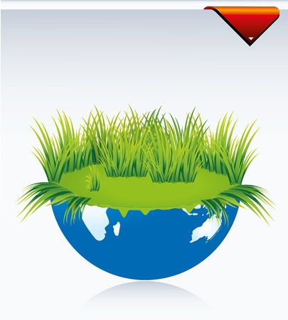 grass and leaf Stock Vector - 8431764