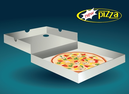 pizza and box Vector