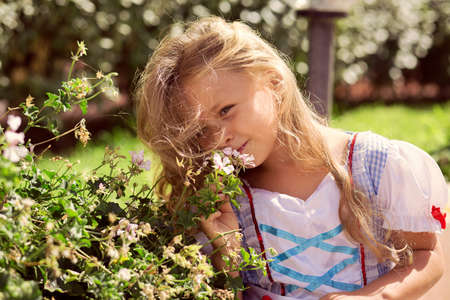Pretty little girl in dress and with long curls smelling blooming floral bush in park looking away in sunlight 版權商用圖片