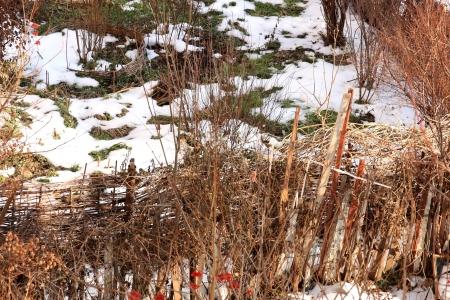 winter thaw: winter thaw on a kitchen garden