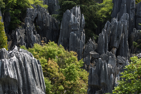 highlands region: Chinas Yunnan Province, Kunming City, Shilin County, Yunnan Stone Forest World Geopark, big stone forest scenic spot Stock Photo