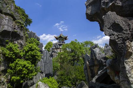 """중국의 운남성, 곤명시, Shilin 카운티, 운남 돌 숲 세계 지질 공원, """"큰 돌 숲""""명승지 스톡 콘텐츠"""