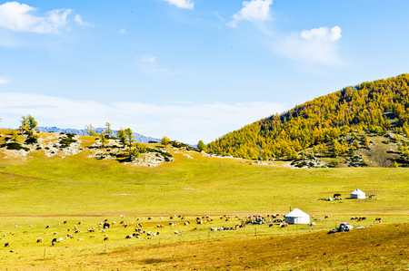 ブルチン県、新疆ウイグル自治区、アルタイ県、泰山風景 写真素材