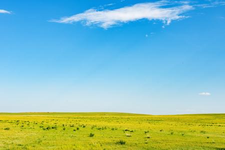 中国内蒙古自治区包頭市 daerhanq、ハイラム ・漣川草地と呼ばれる 写真素材