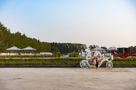 Swan Lake in Wuyuan County