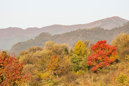 Tachuan Village in Autumn