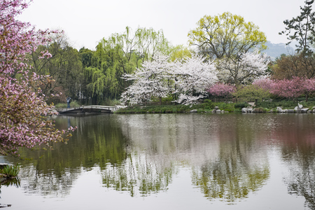 Hangzhou West Lake Scenic Area