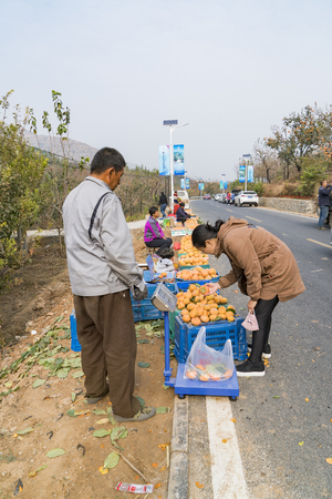 Persimmon Valley, farmers selling persimmons along the road.