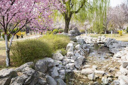 Yuxi garden scenery in Henan Province, China. 写真素材