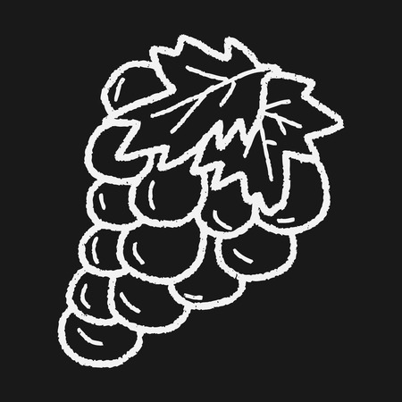 grape doodle Vector