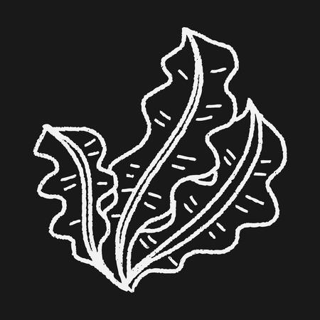alga marina: Kelp garabato