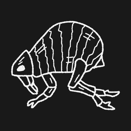 louse: Flea doodle