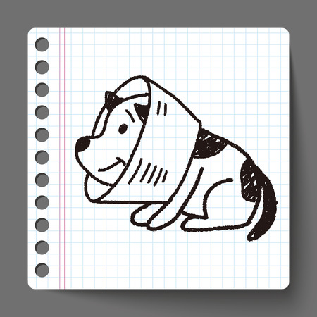 collarin: collar de perro del doodle