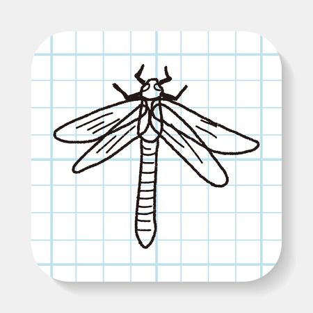 dragonfly wing: Dragonfly doodle