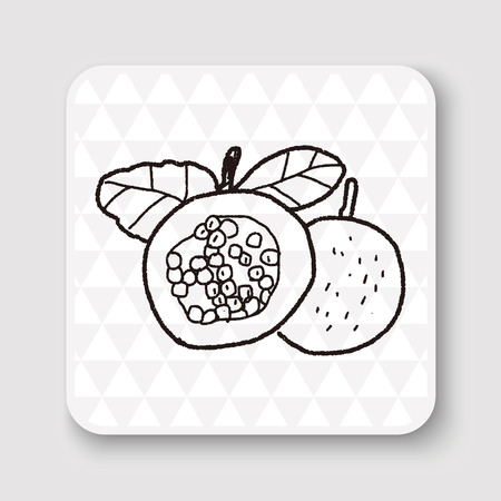 passion fruit: Passion Fruit doodle