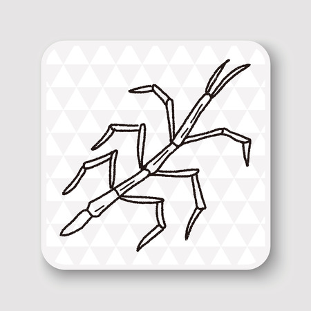 stick insect: Stick insect doodle Illustration