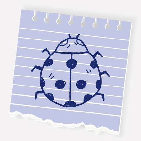 ladybug: Ladybug drawing