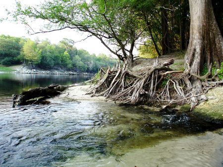 Outdoor River Scene