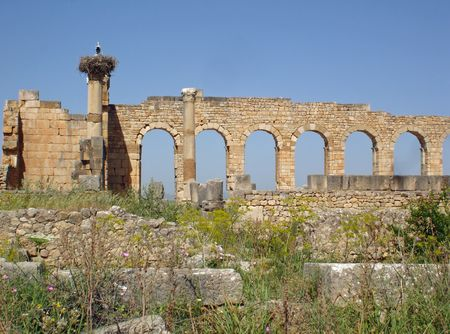volubilis: Arches of Volubilis