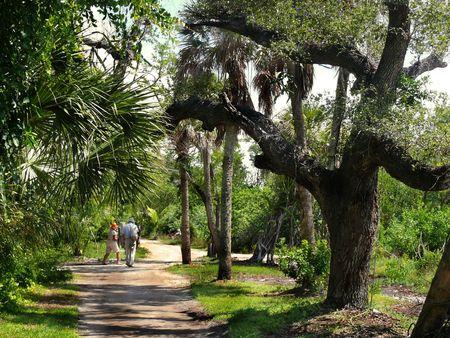 Active Seniors Stroll Outdoors