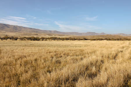 Patagonian steppe in Neuquen, Argentina, near the Andes. Standard-Bild