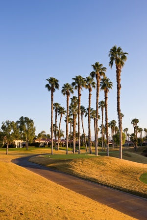 golf of california: Tee at Golf Course in Palm Springs