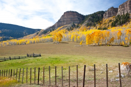 wire fence: Pasture In The Mountains Stock Photo