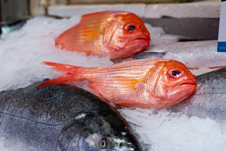 Fish at Pike Place Market in Seattle photo