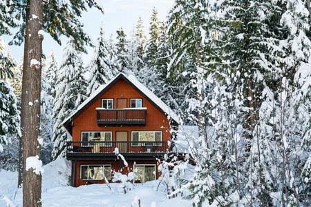 Una cabina se encuentra entre los árboles en el invierno. Esto es en el noroeste del Pacífico en el estado de Washington EE.UU..