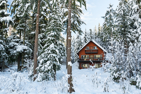 northwest: A cabin sits among the trees in the winter.  This is in the Pacific Northwest in Washington state USA.