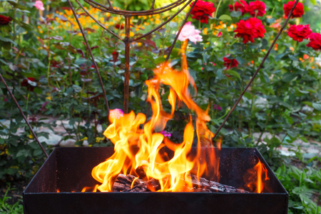 Burning wood in a brazier. Fire, flames. Grill or bbq
