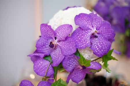 Close up of purple orchid wedding bouquet with rings on it