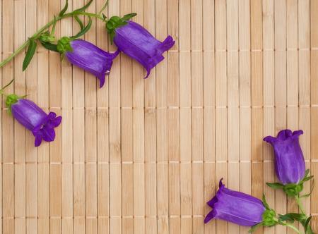 ultramarine: Branch of ultramarine colored bellflowers on beige bamboo napkin, copyspace Stock Photo